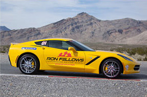 ron-fellows